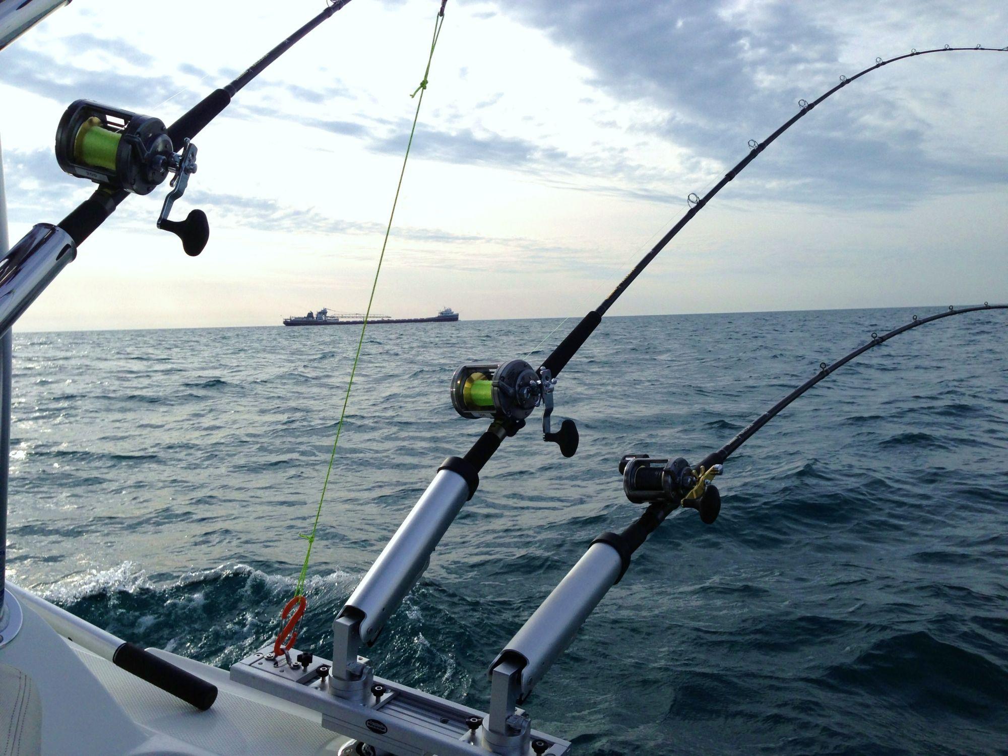 Abu Dhabi fishing tours